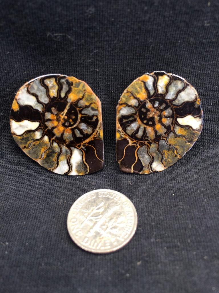 Hematite Ammonite pair #1