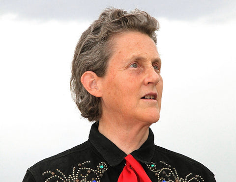 Temple Grandin endorses My Feelings game