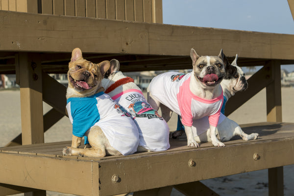 Cherie the Surf Dog's Surf Club Doggie T-Shirt