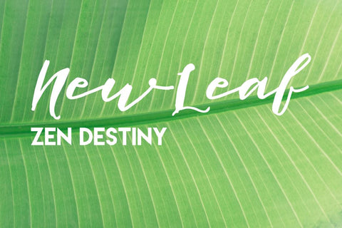 New Leaf - Zen Destiny
