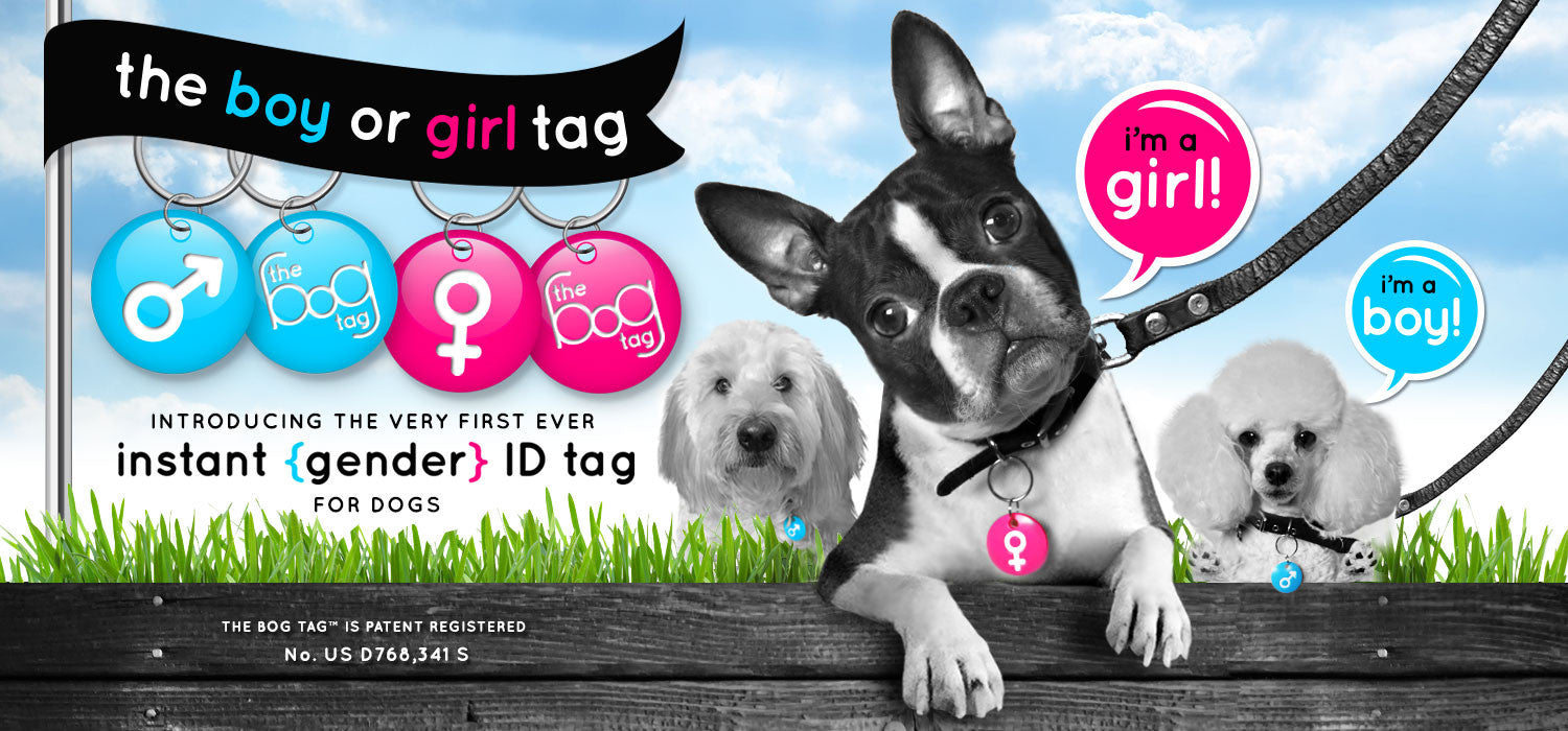 Introducing The Bog Tag™