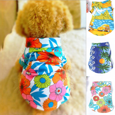Tropical Dog Clothes and Accessories