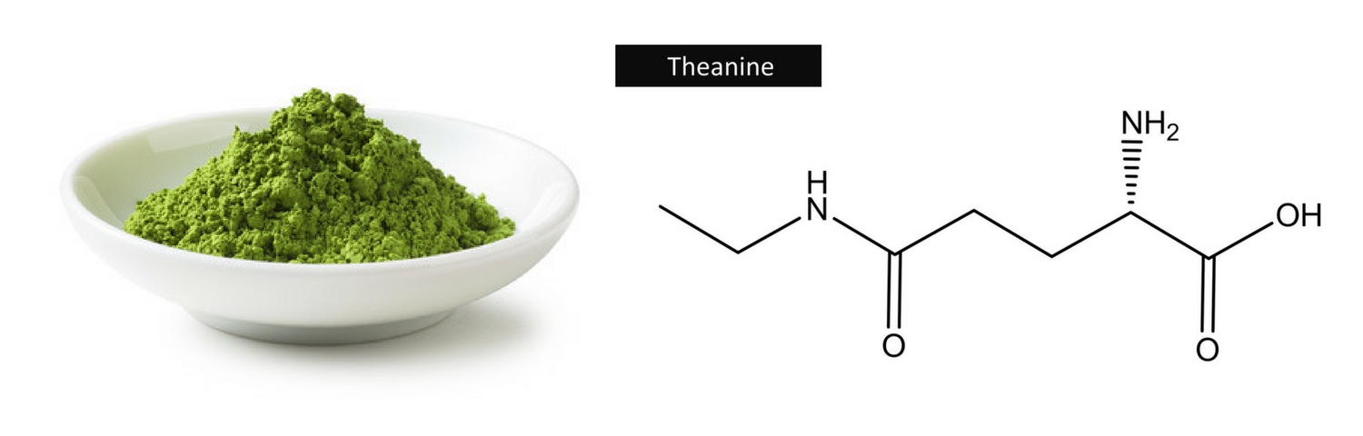 L-Theanine Matcha Benefits