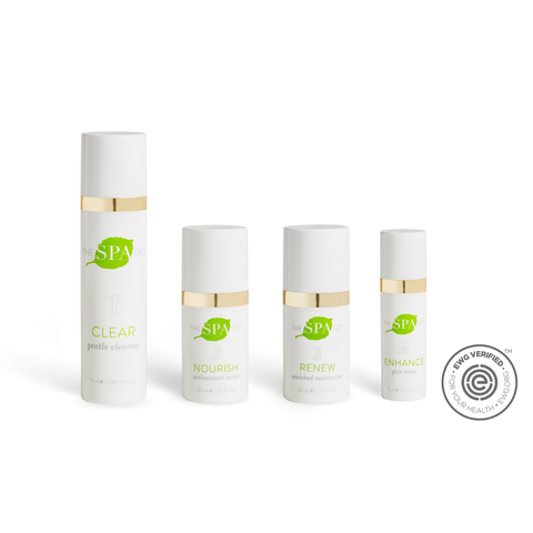 Special Offer $100 Off- Daily Essentials 4-Step Skin Care System 1 Time Purchase