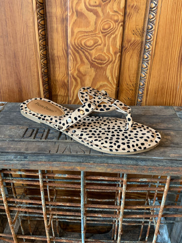 Pierre Dumas Limit-20 Cheetah Sandal