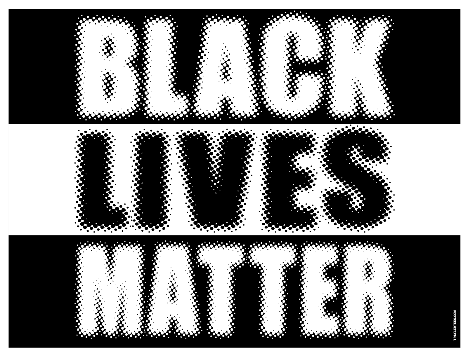 Black Lives Matter Sign & Stake