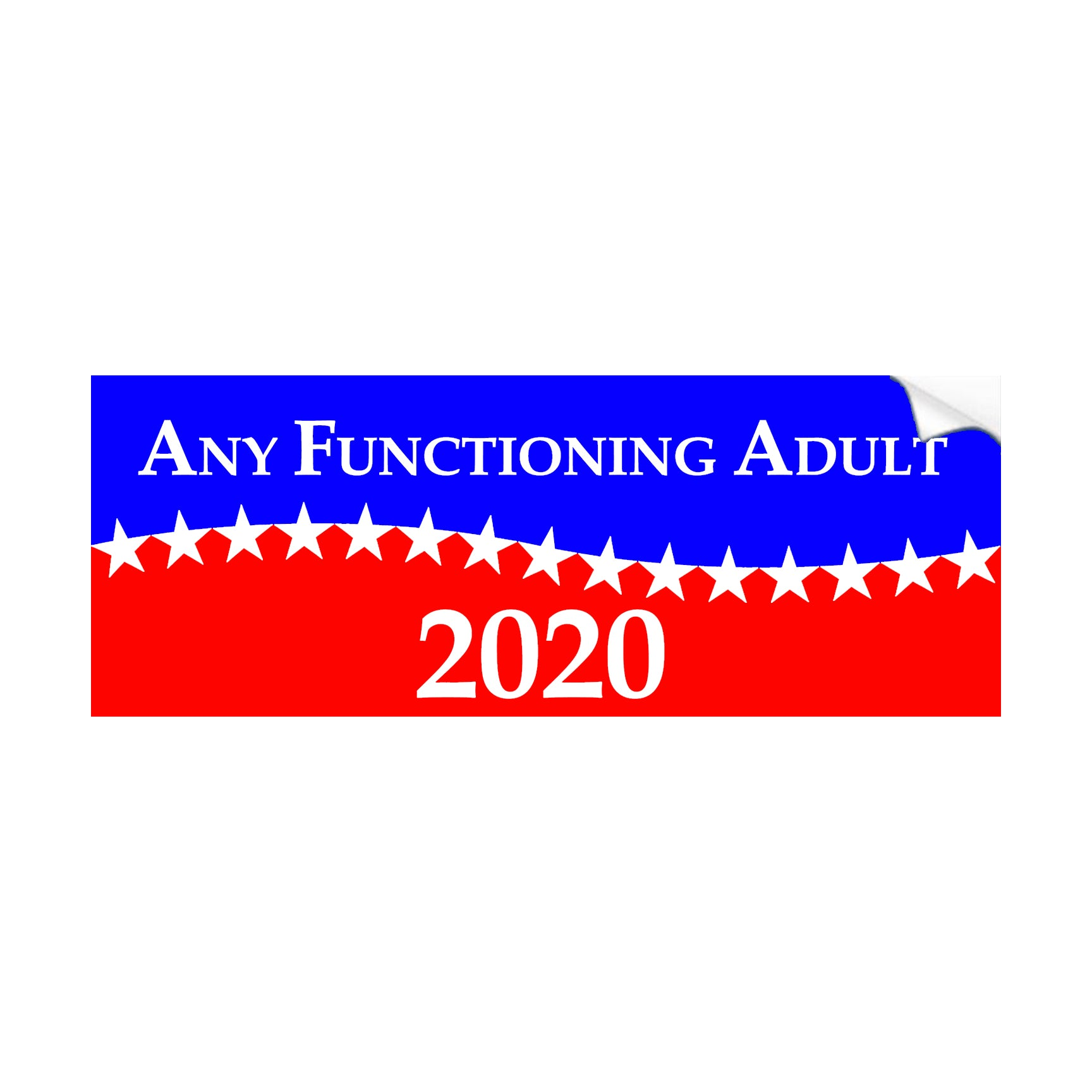 Any Functioning Adult 2020 Election Bumper Stickers - 3 pack