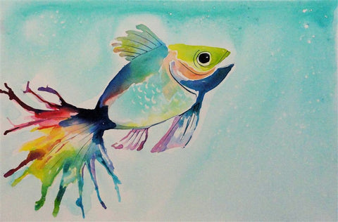 Sam The Fish - Canvas Art Online Australia from Go Arty
