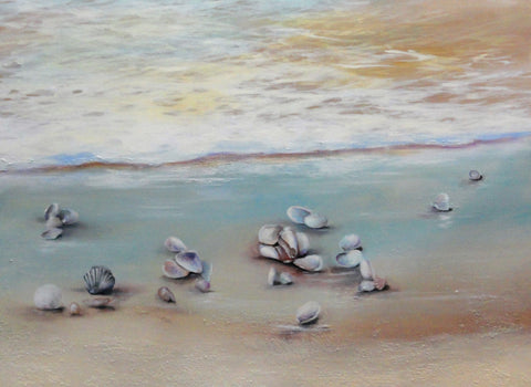Seashore Shells Summer - Canvas Art Online Australia from Go Arty