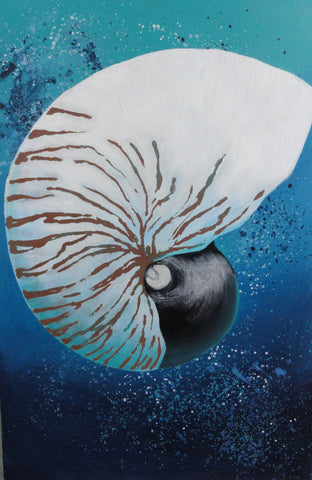 Tiger Nautilus - Canvas Art Online Australia from Go Arty