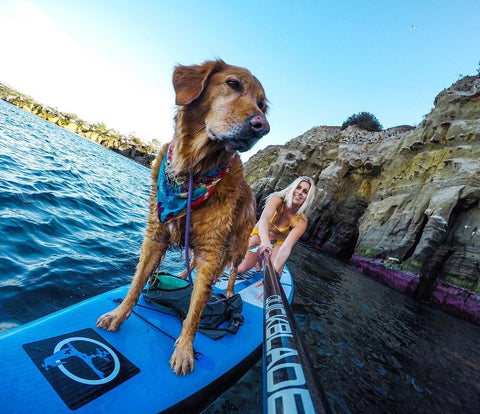 Stand Up Paddle boarding In California