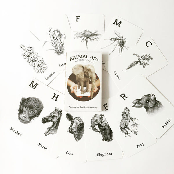 Animal 4D  & Food Flashcards - DIY Flashcards & Edutoys Singapore