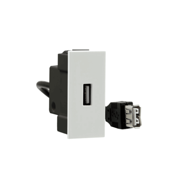 Crabtree Amare USB Data Port ACNGPXW001