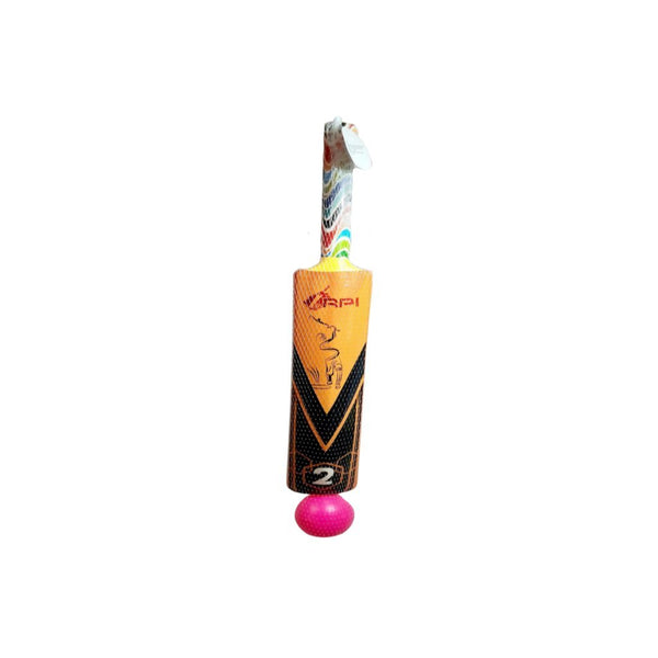 RPI Cricket Bat with ball