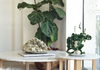 INSPIRING WAYS TO DECORATE WITH INDOOR PLANTS
