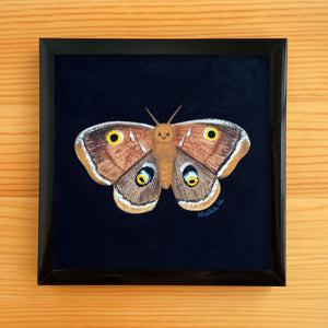 Brown Moth - Mini Painting