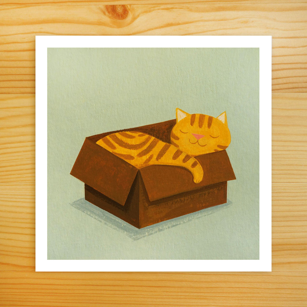 Favorite Box - Cat Art Print