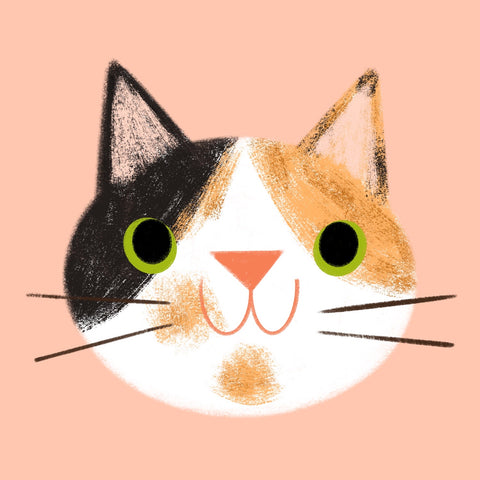 Cat Face - Digital Custom Portrait