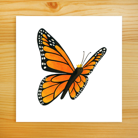 Monarch Butterfly - 5x5 Print