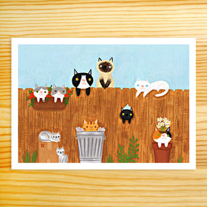 Neighborhood Cats - 5x7 Print