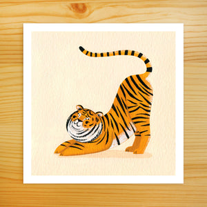 Tiger Stretch 2 - 5x5 Print