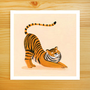 Tiger Stretch - 5x5 Print