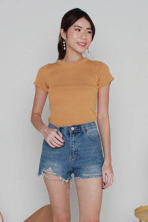 Basic Sleeved Knit Top In Honey Yellow
