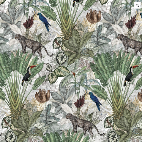 Jimmy Cricket Jungle Wallpaper on DLK | designlifekids.com