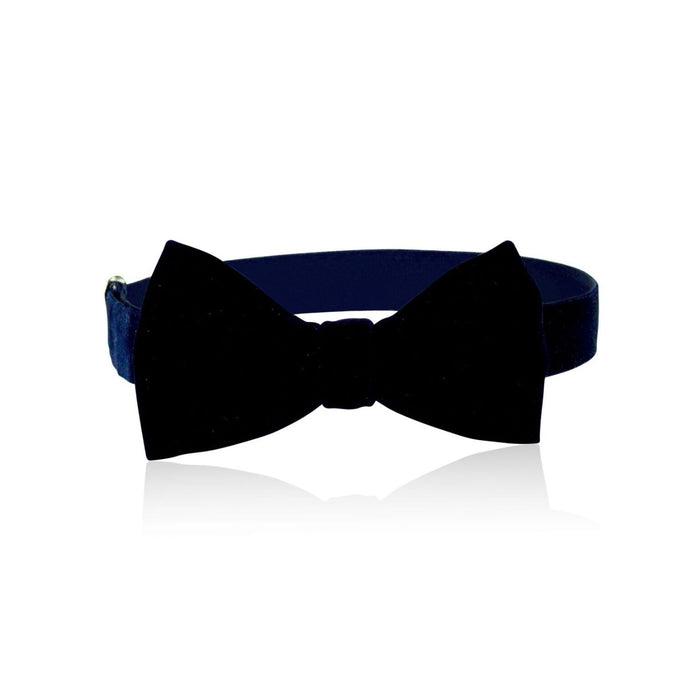 Milk & Soda Velvet Bow Tie on DLK | designlifekids.com