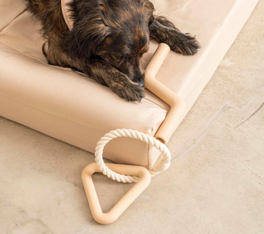 Wild One Modern Dog Chew Toys on Design Life Kids