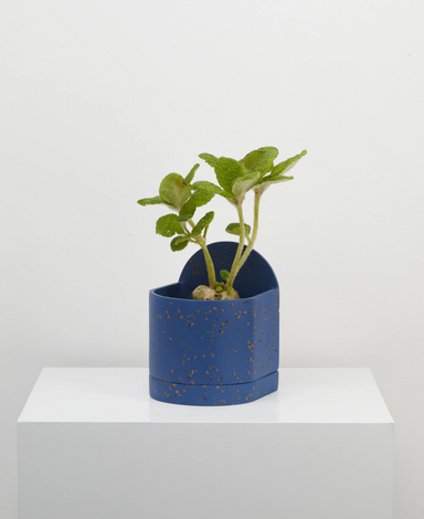 Capra Designs Sol Planter on Design Life Kids