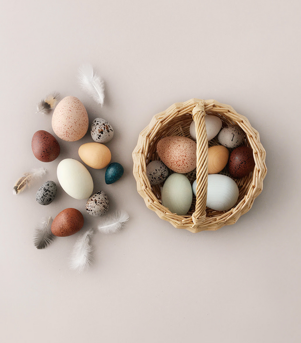 Moon Picnic A Dozen Birds Eggs Toy on Design Life Kids