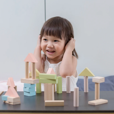 Plan Toys 40 Unit Blocks on Design Life Kids