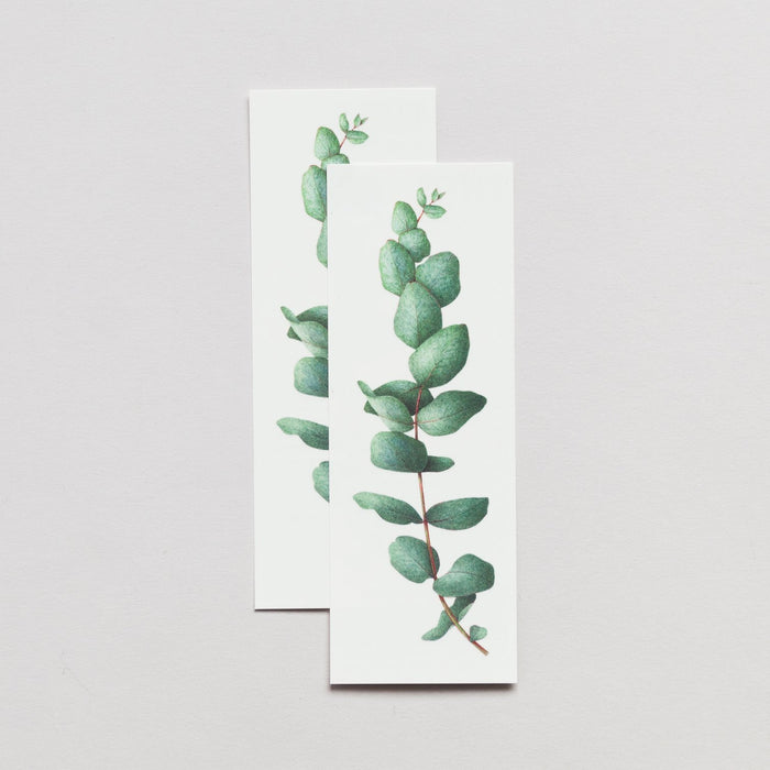 Tattly Eucalyptus Watercolor Tattoo on DLK | designlifekids.com