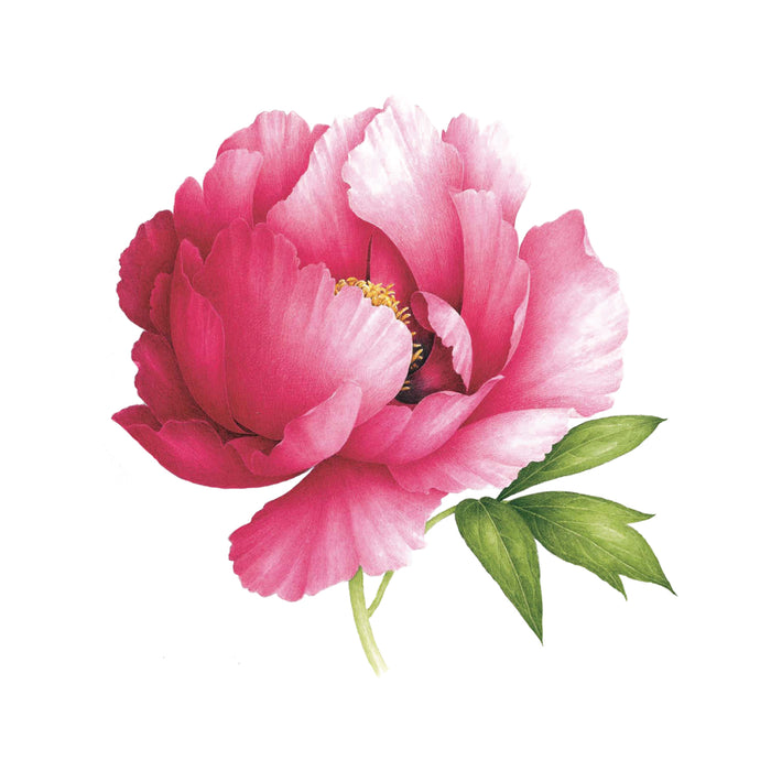Tattly Pink Peony Scented Tattoo at Design Life Kids