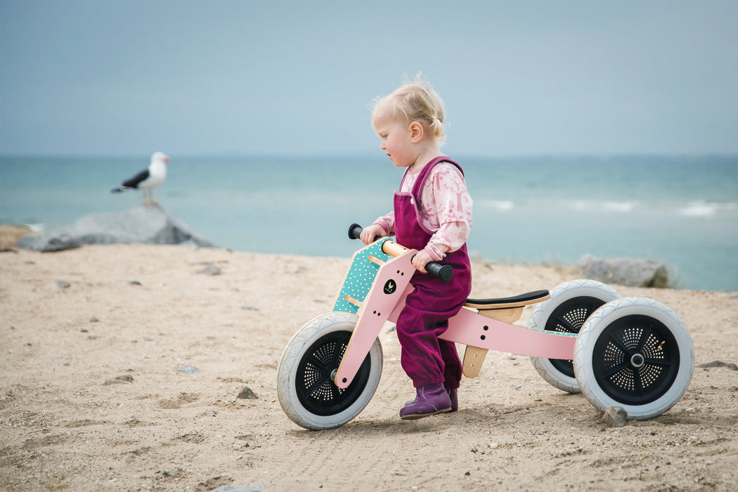 Wishbone 3-in-1 Bike on DLK | designlifekids.com