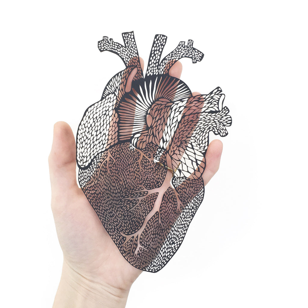 Anatomical Heart Papercutting Artwork