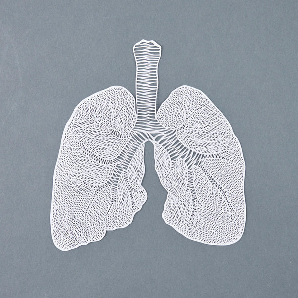 Hand-Cut Papercutting Artwork - Anatomical Lungs