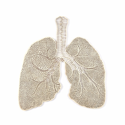 Anatomical Lungs Lasercut Wooden Artwork