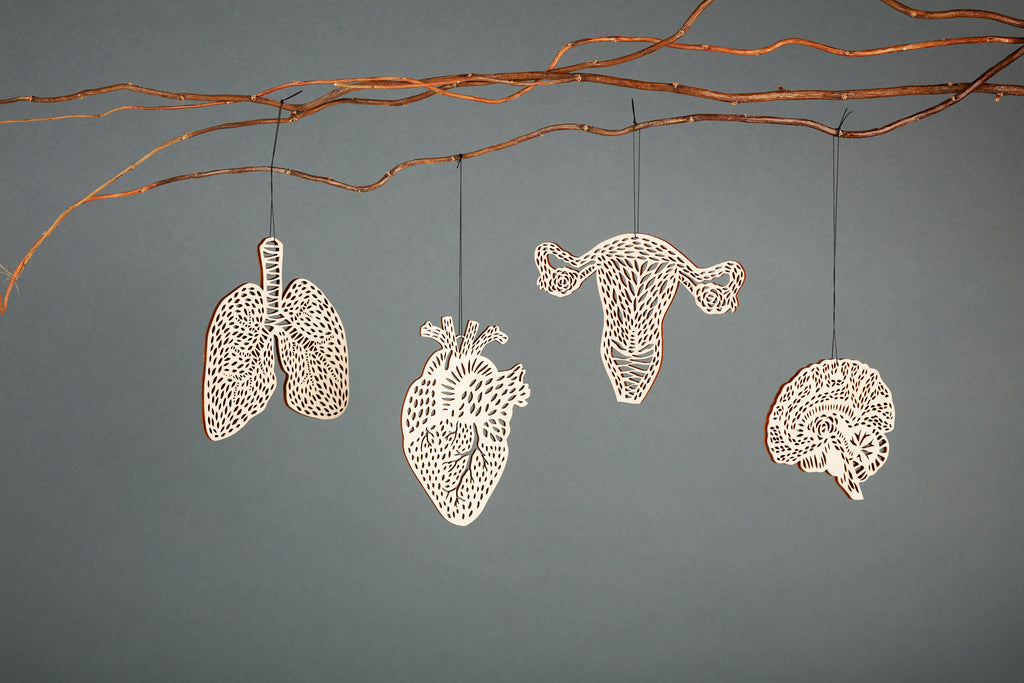 Lasercut Birch Wood Anatomical Ornaments, by Light + Paper, Made in Toronto