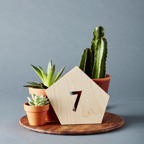 Geometric Wedding Table Numbers