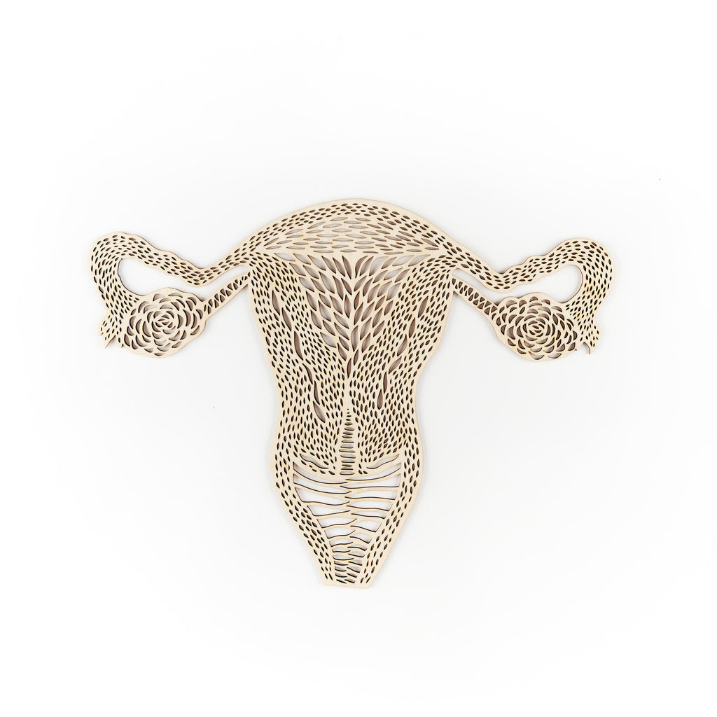 Anatomical Uterus and Ovaries Wooden Artwork