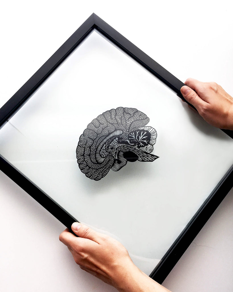 Laser-Cut Papercutting Artwork - Anatomical Brain