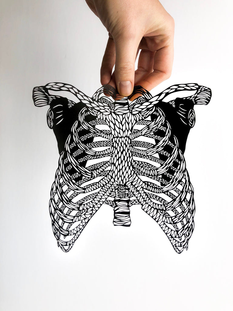 Laser-cut Papercutting Artwork - Anatomical Ribs
