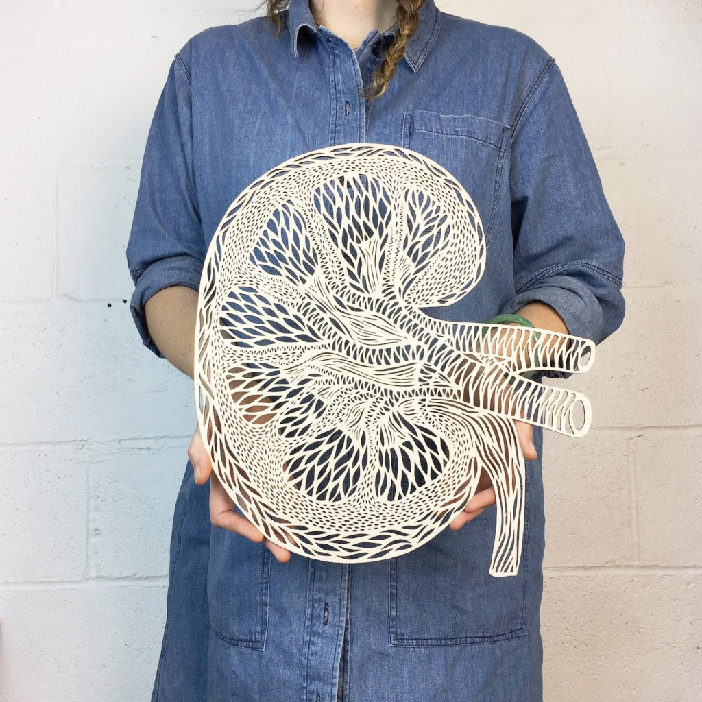 Anatomical Kidney Lasercut Wooden Artwork