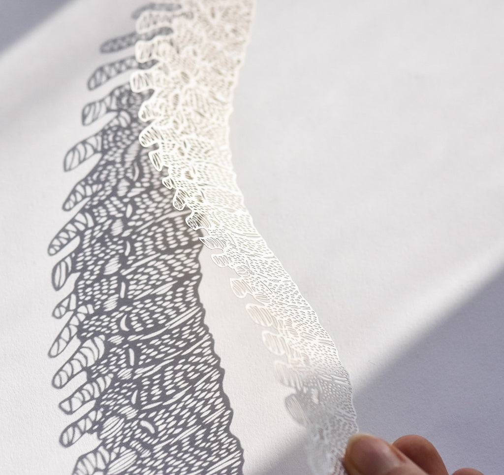Anatomical Spine Papercutting Artwork
