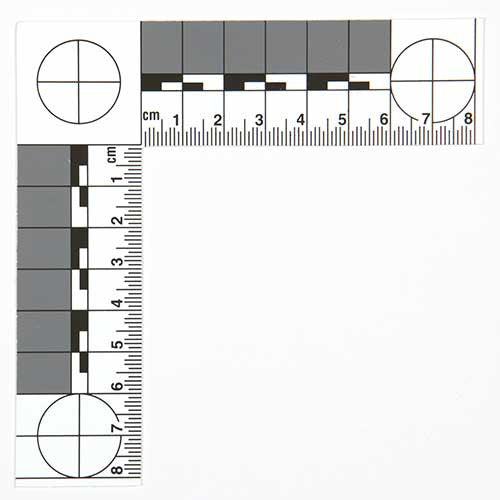 Photographic Scale - Small