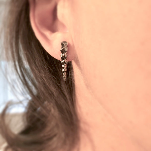 Turritella Spiral Post Earrings