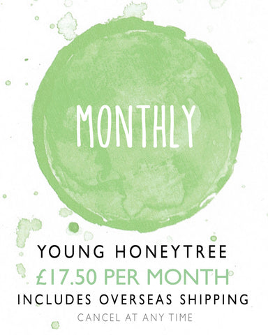 Young HoneyTree Children's Stationery - Monthly Stationery Subscription Box Overseas
