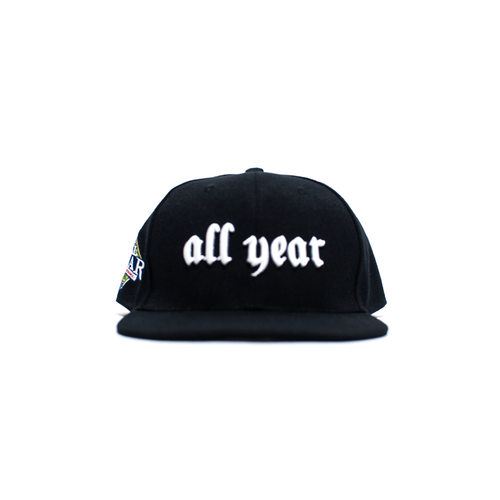 ALL YEAR '08 SNAP BACK CAP